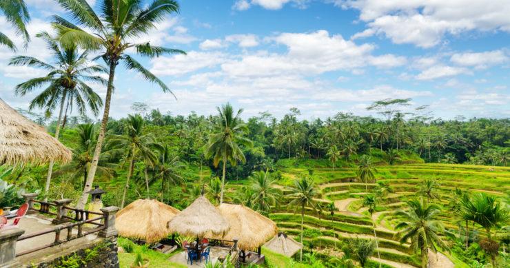 インドネシア・バリ島にあるテガララン村のライステラス(棚殿)の風景